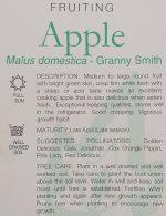 Malus-domestica-Granny-Smith-2